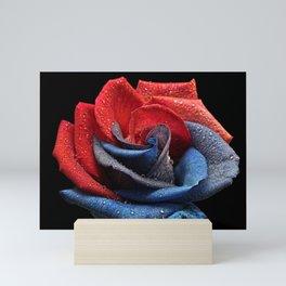 Raindrops On Rose Mini Art Print