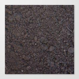 Texture #6 Soil Canvas Print