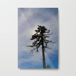 Today, I am Alone. Metal Print