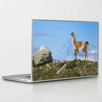 chile Laptop & iPad Skins featuring A Guanoco, in Patagonia, Chile. by davehare