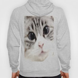 My name is chill of pink nose and blue eyes. I Love Cat. (Normal) Hoody