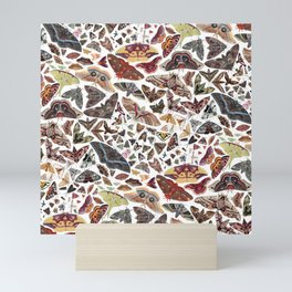 Moths of North America Pattern Mini Art Print