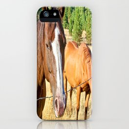 Country Livin' iPhone Case