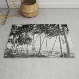 Miami Florida Palm Trees Black and White Vintage Photograph, 1915 Rug