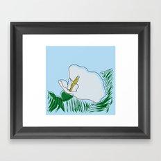 White Calla  Framed Art Print