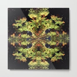 Autumn Sunshine Metal Print