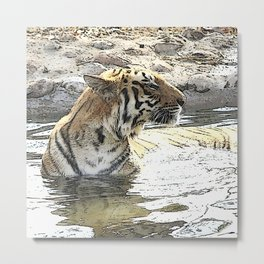 CArt TIger 118 Metal Print