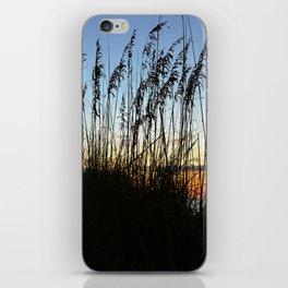 Sea Oats at sunset iPhone Skin