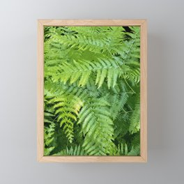 Lush green fern leaves, tropical forest illustration in vivid colors Framed Mini Art Print