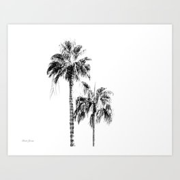 PALM LIGHT Art Print