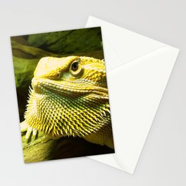 My First Beard! Stationery Cards