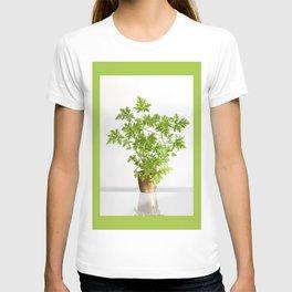 Pelargonium citrosum plant T-shirt
