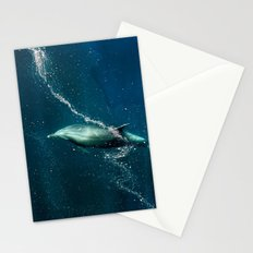 SanJose waters. Stationery Cards