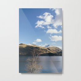 Sunlit trees on the shore of Thirlmere. Cumbria, UK. Metal Print