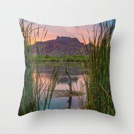 Pastel Evening Throw Pillow