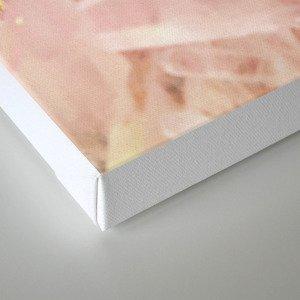 Serenity and Rose Quartz Crystals Canvas Print