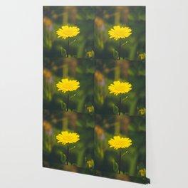 188 - Spring Wallpaper