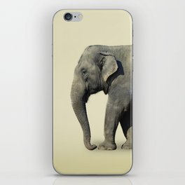 Inner Space Elephant iPhone Skin