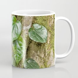 Vine and Moss on Tree in the Rainforest Coffee Mug