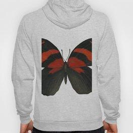 BD Butterfly Hoody