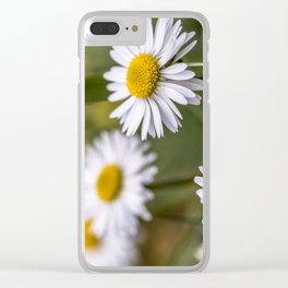 Daisy field Clear iPhone Case