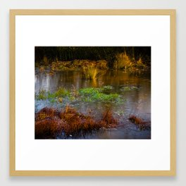 Kintbury Newt Ponds Framed Art Print