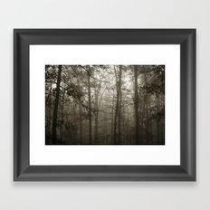 Foggy Woods Framed Art Print