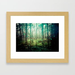 Magical Green Forest - Nature Photography Framed Art Print