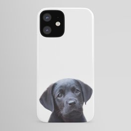 Puppy, Black Labrador, Baby Animals Art Print By Synplus iPhone Case