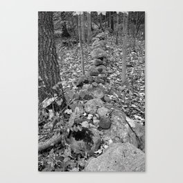 Wall in the Woods Canvas Print