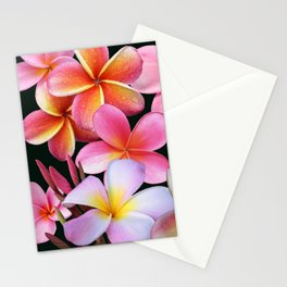 Pink Plumerias Stationery Cards
