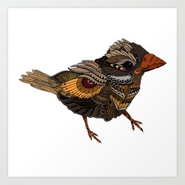 Ornate Bird - coloured Art Print
