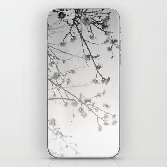 Rising Dawn iPhone & iPod Skin