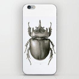 Ox Beetle/Strategus antaeus iPhone Skin