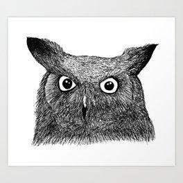 The Eyes of Wisdom Art Print