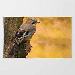 Jay bird in the park Rug