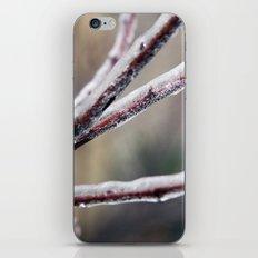 Ice Shield iPhone & iPod Skin