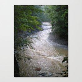 wintergreen gorge Canvas Print