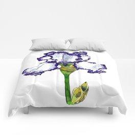 Purple and White Bearded Iris Comforters
