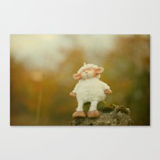 Just Sitting in the Evening Sun Canvas Print