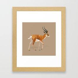 Gazelle. Framed Art Print