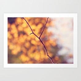 Autumn Branch Art Print
