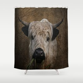 White High Park Cattle Chewing Grass Shower Curtain