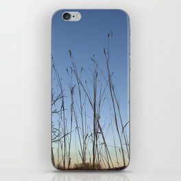 Prairie Twilight iPhone Skin