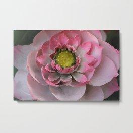 Lotos - Lotus Flower big close up Illustration Metal Print