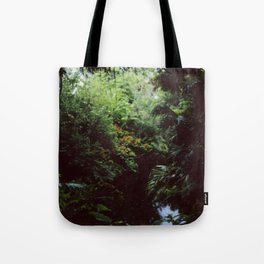 Swiss Family Treehouse Tote Bag