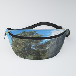 Point of View Fanny Pack