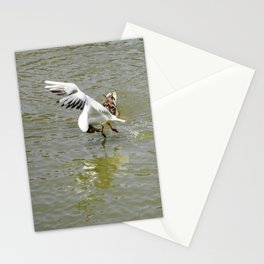 Bird Flexibility Stationery Cards