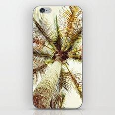 Palm Tree Perfect iPhone & iPod Skin