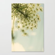 Botanical Queen Anne's Lace Canvas Print